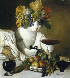 bacchus cat