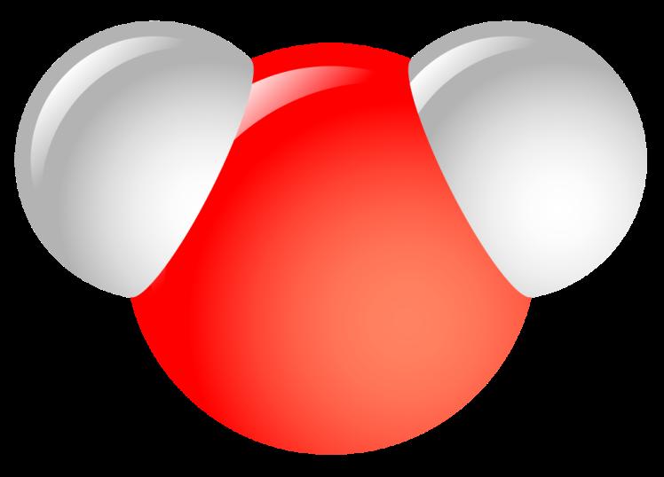 molecula apa