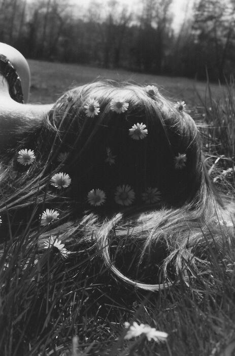 daisies sleeping girl